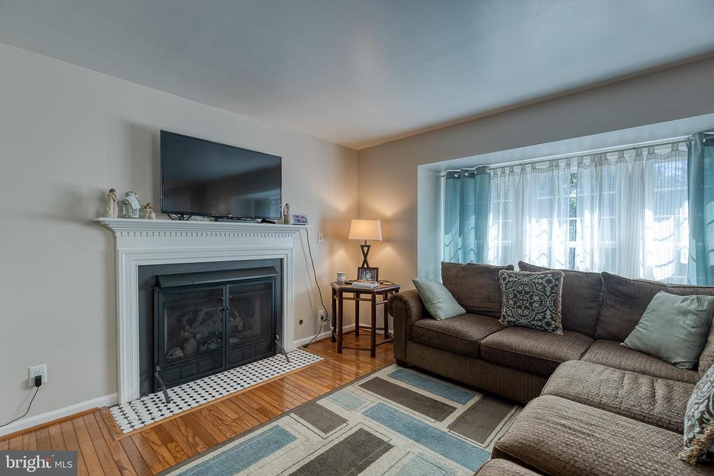 Gas fireplace in the family room - 132 NORTHAMPTON BLVD, STAFFORD