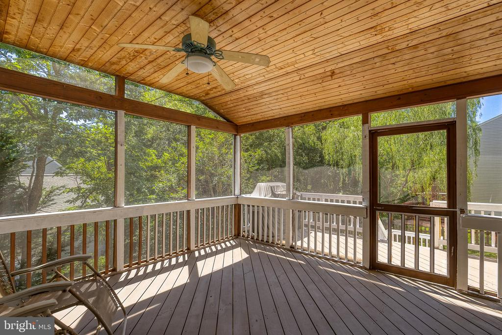 Access to the back yard from the screened in deck - 132 NORTHAMPTON BLVD, STAFFORD