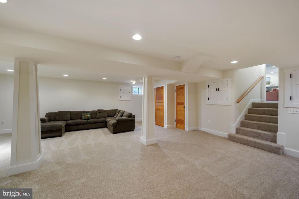 Lower Level Recreation Room - 5312 CARLTON ST, BETHESDA