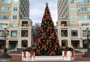 RTC Holiday Tree - 11990 MARKET ST #215, RESTON