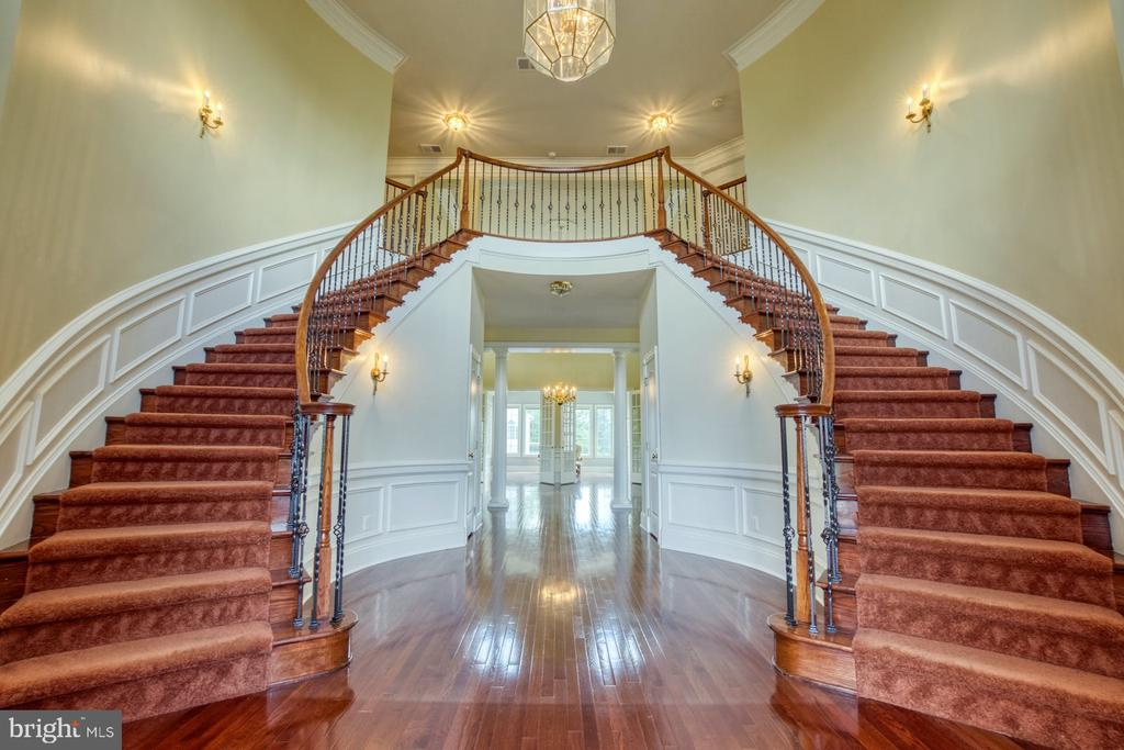 WHAT A GRAND ENTRY INTO THE HOME! - 20003 BELMONT STATION DR, ASHBURN