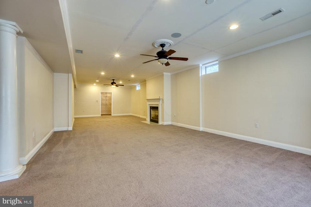 THIRD FIREPLACE IN THE BASEMENT! - 20003 BELMONT STATION DR, ASHBURN