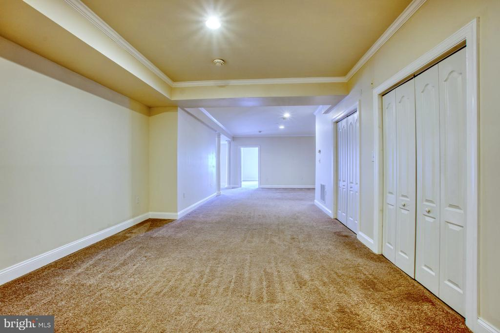 OVER 2800 SQFT OF SPACE IN THE FINISHED BASEMENT - 20003 BELMONT STATION DR, ASHBURN