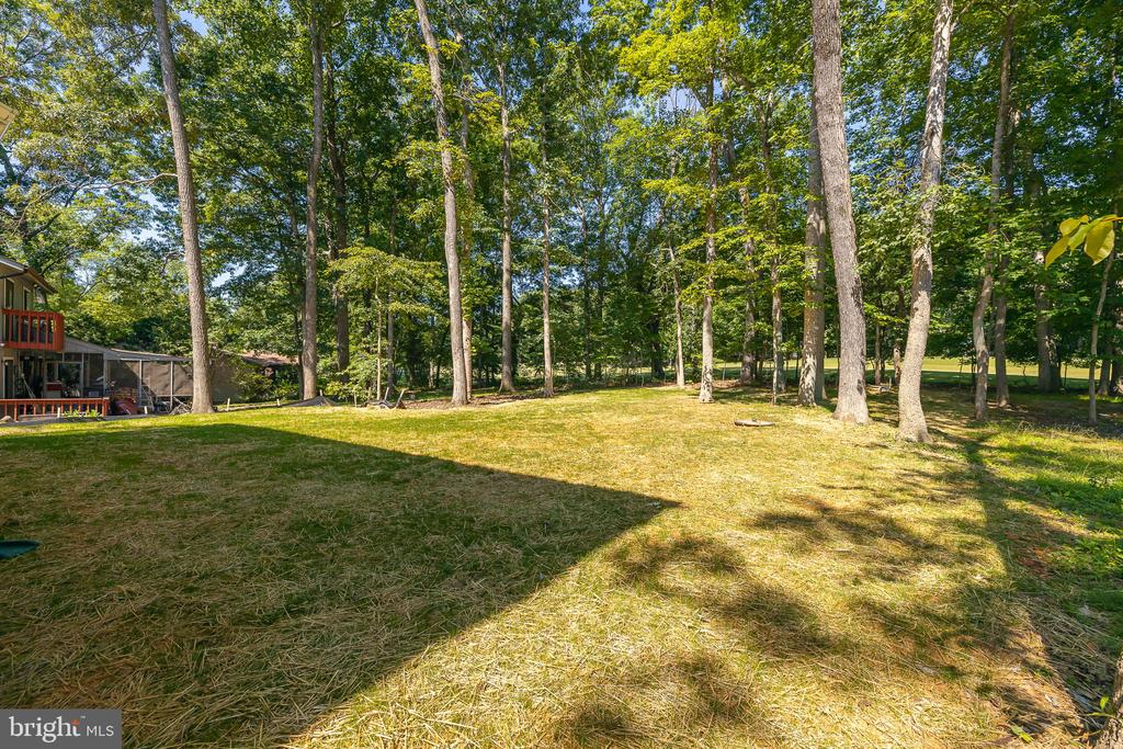 level rear yard, backs to trees and golf course - 418 BIRDIE RD, LOCUST GROVE