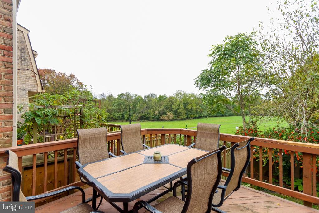 Large back deck over looks open space - 8288 WATERSIDE CT, FREDERICK