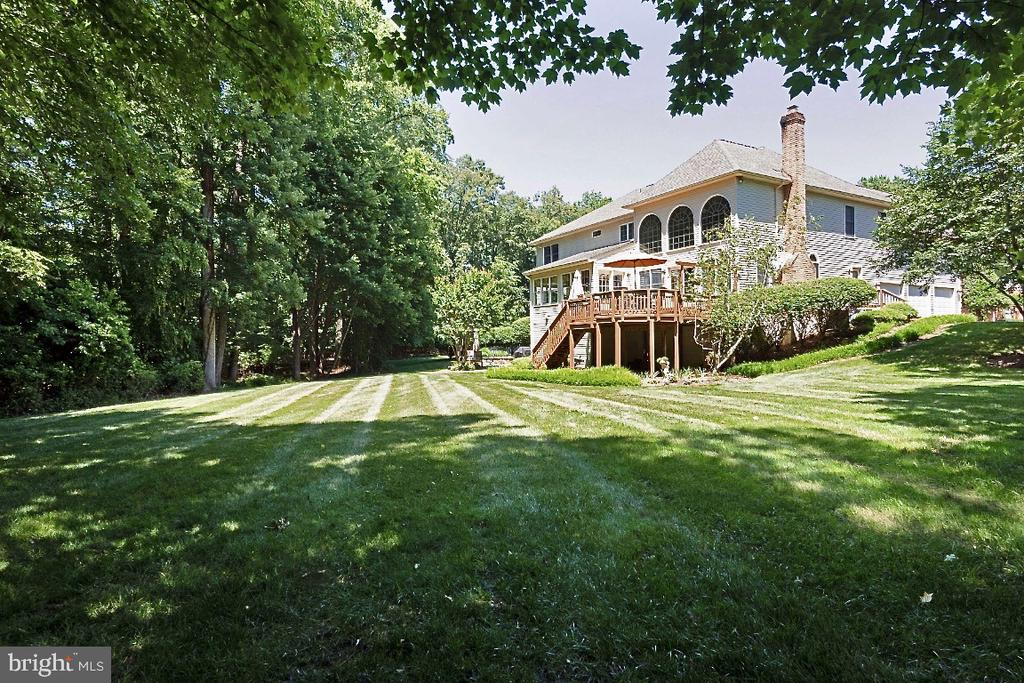 Surrounded by trees - 3200 OX MEADOW CT, HERNDON