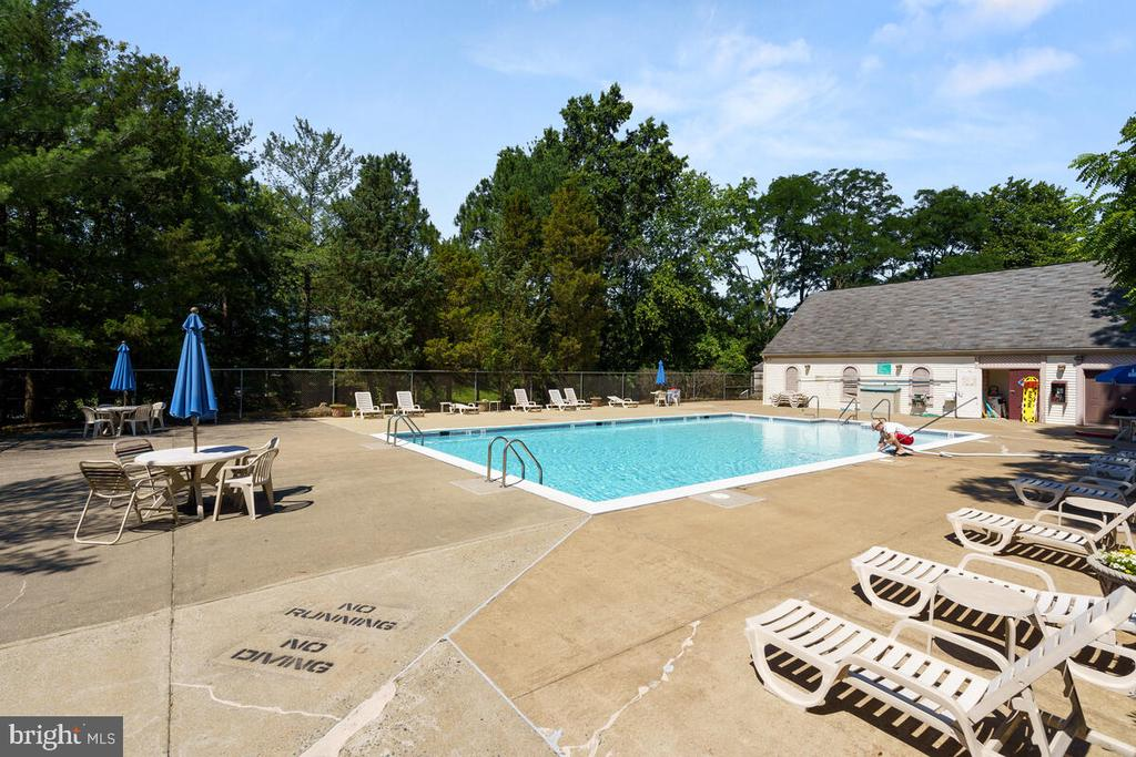 Community Pool - 5835 ORCHARD HILL LN, CLIFTON