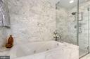 Jetted tub and separate shower - 2001 15TH ST N #1106, ARLINGTON