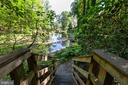 Leading down to the private pond - 3208 SHOREVIEW RD, TRIANGLE