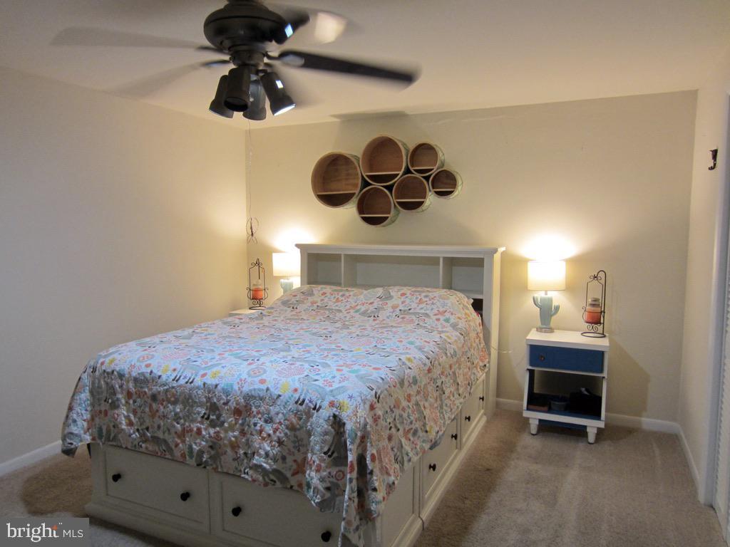 Lower level bedroom #4 - 81 ESTATE ROW, STAFFORD