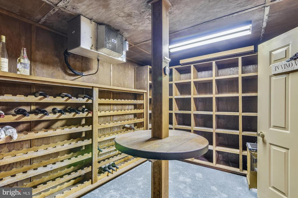 Wine cellar - 1823 OLD WINCHESTER RD, BOYCE