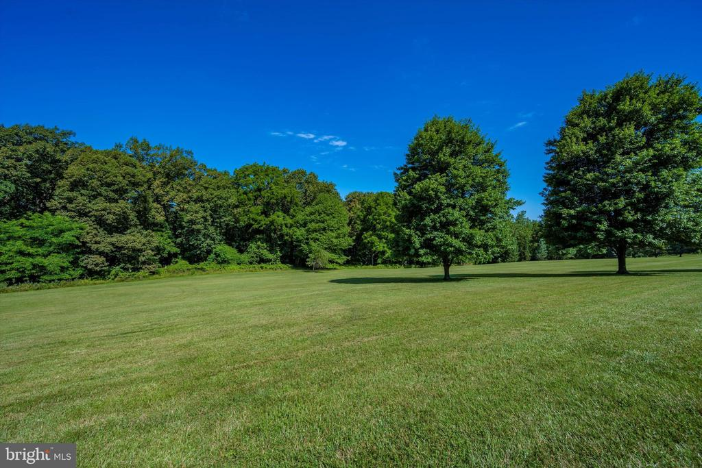 View looking from the front of the home - 10740B WOODSBORO RD, WOODSBORO