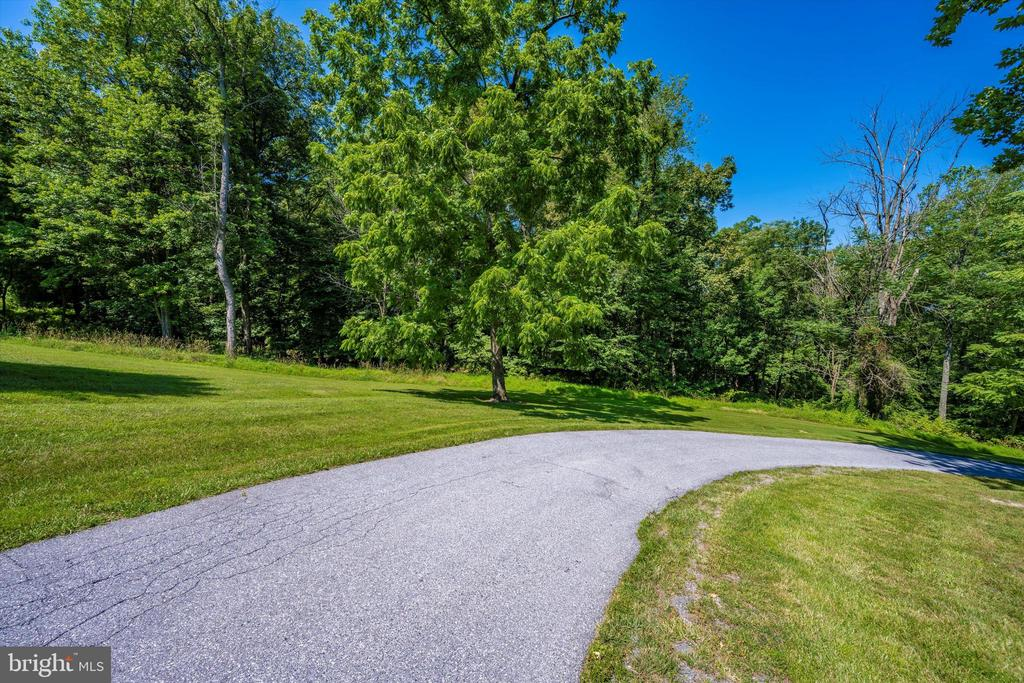 View from coming up the paved driveway. - 10740B WOODSBORO RD, WOODSBORO