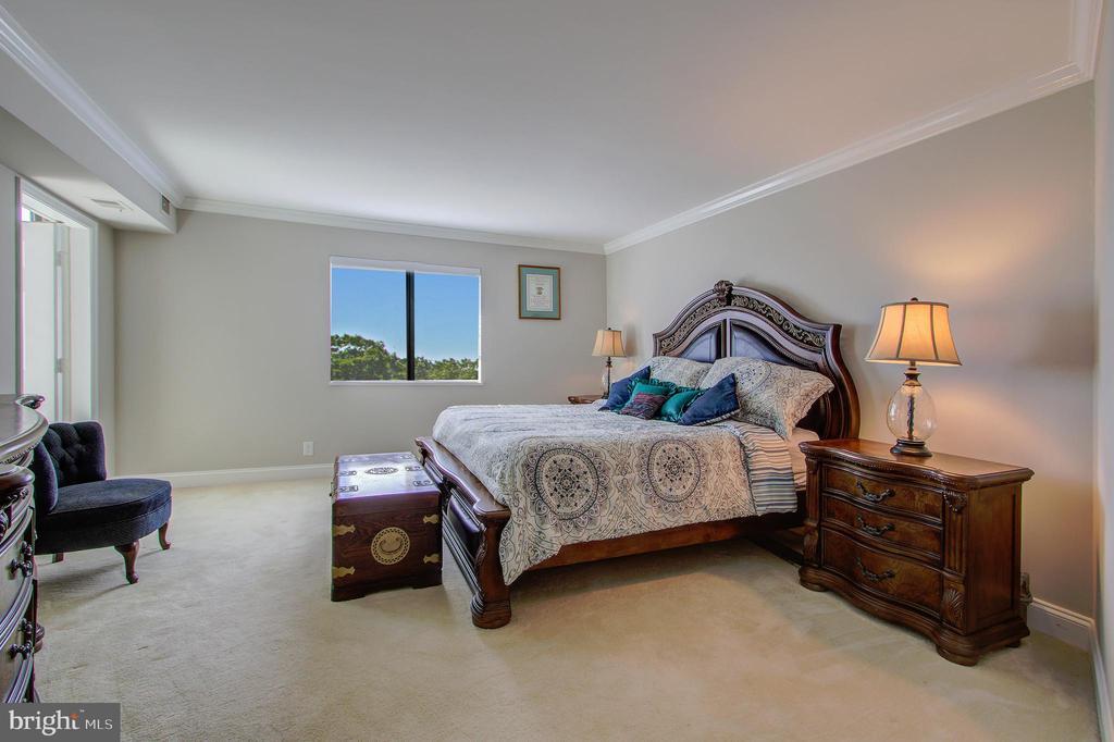 Primary/Master Bedroom - 5904 MOUNT EAGLE DR #504, ALEXANDRIA