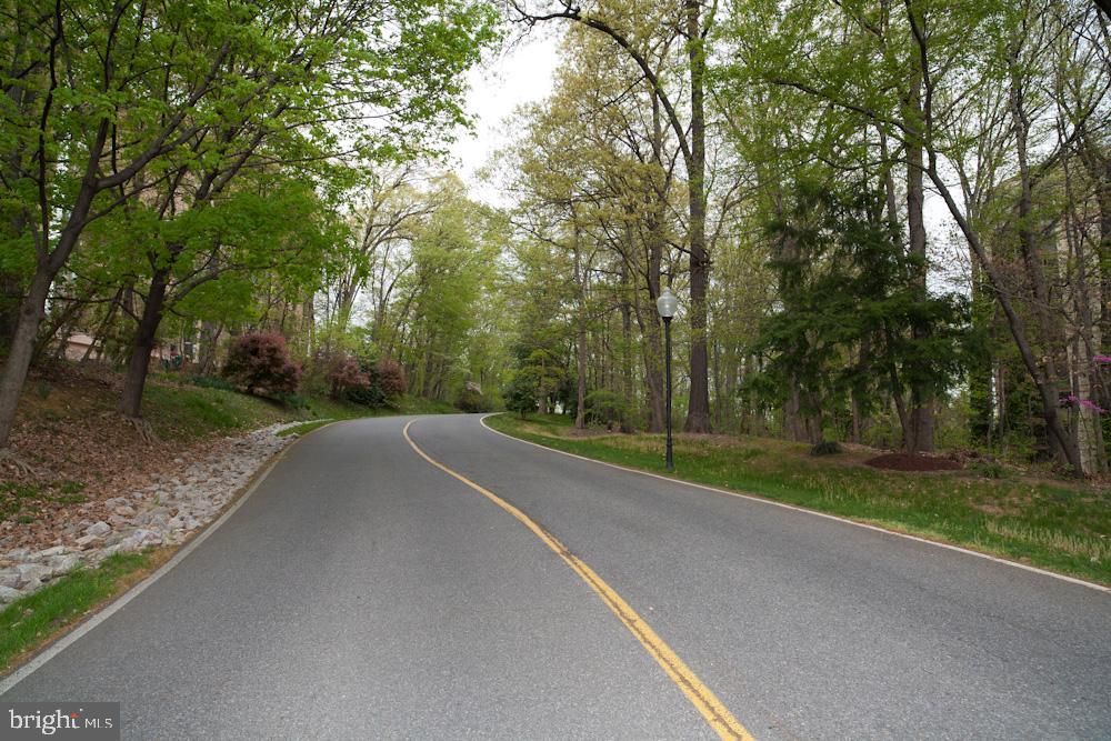 Mount Eagle Drive through Park to Mountain-Top! - 5904 MOUNT EAGLE DR #504, ALEXANDRIA
