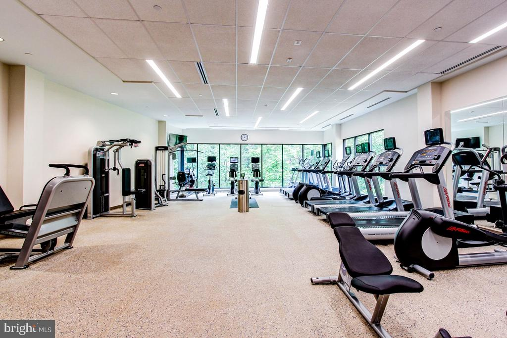 Montebello State-of-the-Art Fitness Center! - 5904 MOUNT EAGLE DR #504, ALEXANDRIA