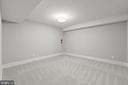 Cozy basement den - 43409 RIVERPOINT DR, LEESBURG
