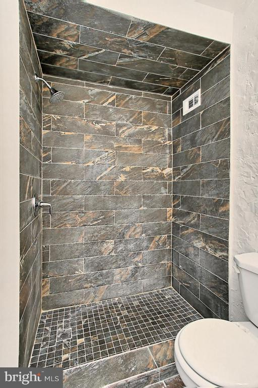 Spa-like shower easy to get in and out - 6137 LEESBURG PIKE #602, FALLS CHURCH