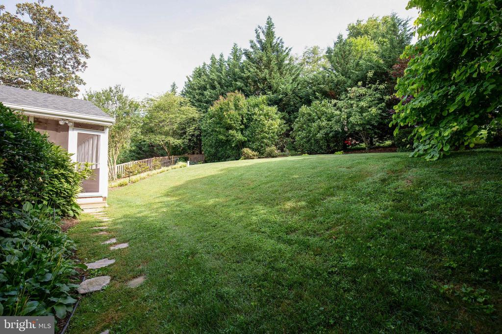 Privacy bushes and trees to escape the hubbub :) - 7324 PINECASTLE RD, FALLS CHURCH