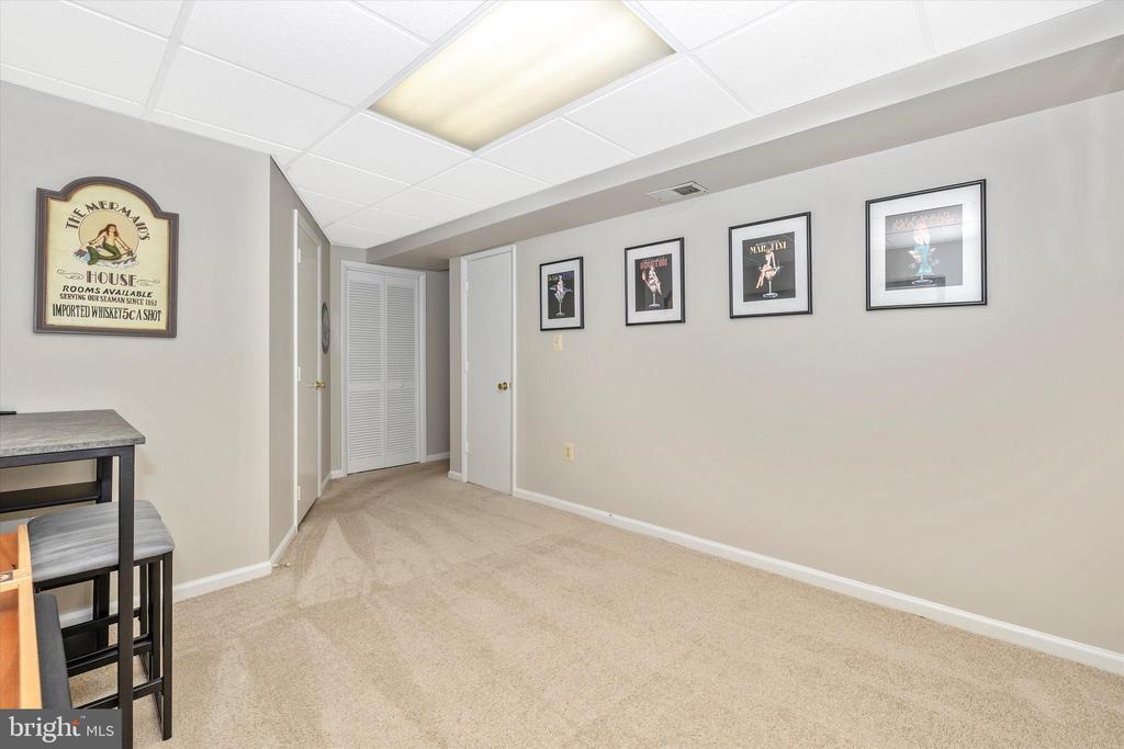 Lower Level Bonus Room (1 of 2) + RR = 3 Rooms!! - 18312 AMBER MEADOWS CT, GAITHERSBURG
