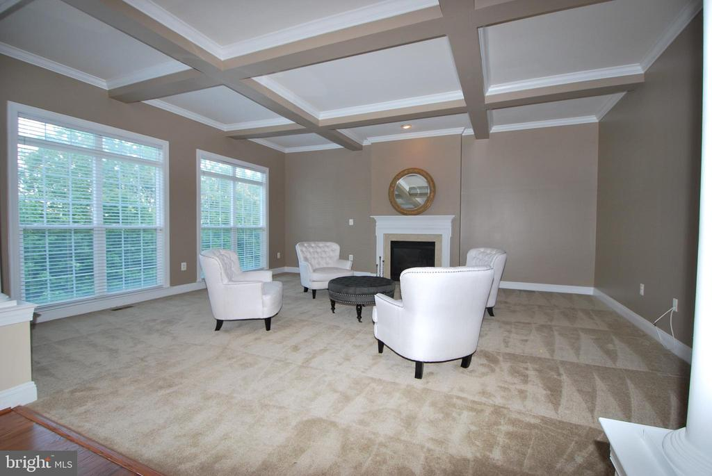 Coffered ceiling and 4ft extension - 22554 FOREST RUN DR, ASHBURN
