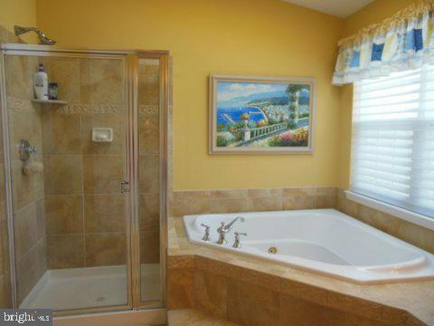 Master bath showing shower and tub - 20064 NORTHVILLE HILLS TER, ASHBURN