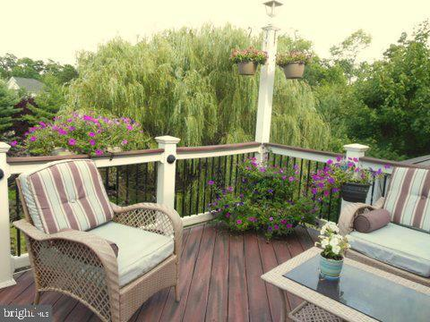 Beautiful view of tree reserved area - 20064 NORTHVILLE HILLS TER, ASHBURN