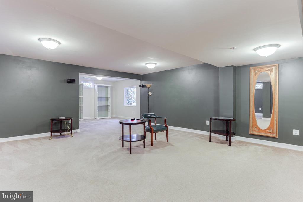 Basement rec room - 111 MAROON CT, FREDERICK