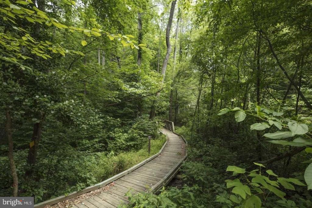 Trails - 17152 BELLE ISLE DR, DUMFRIES