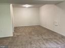 Finished Walkout Basement Newer Carpet - 22554 FOREST RUN DR, ASHBURN