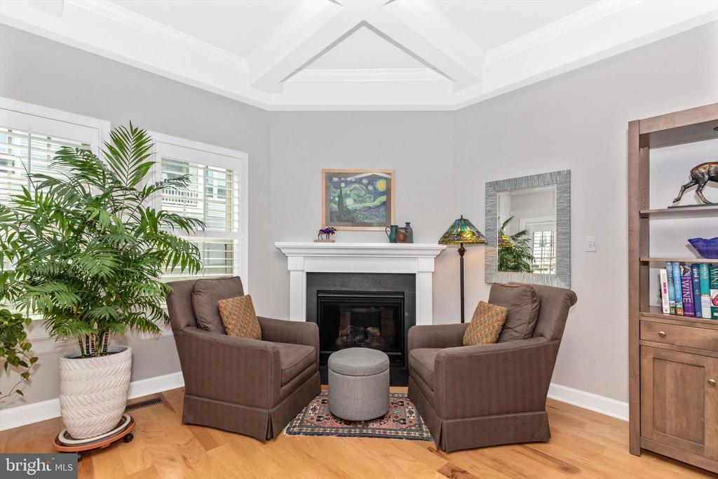Gas fireplace! - 3835 FULHAM RD, FREDERICK