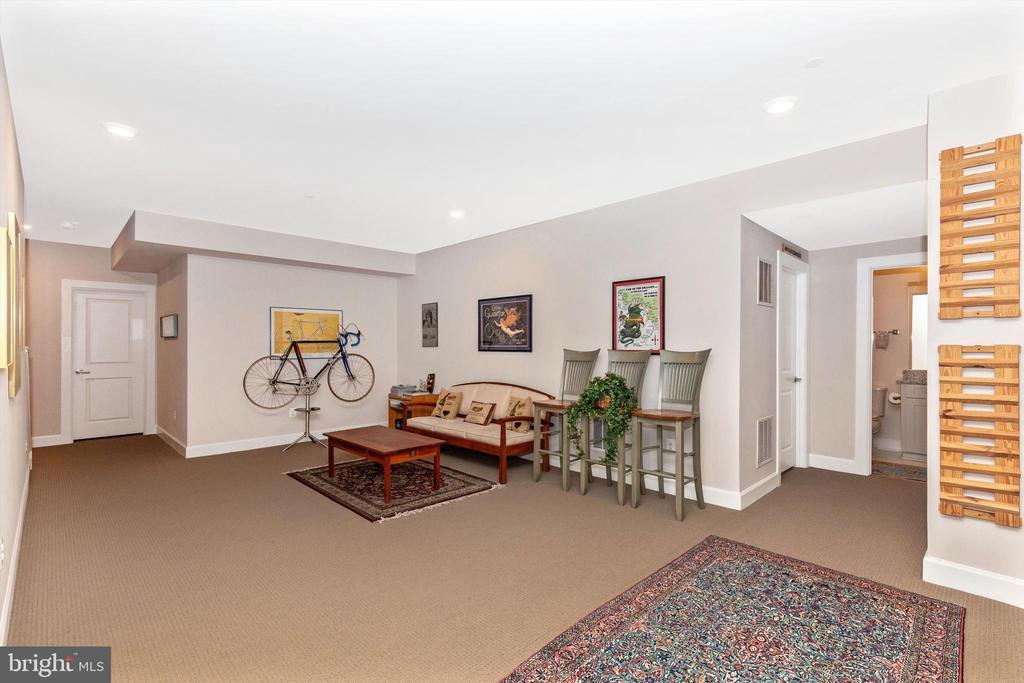 Lower Level Sitting Room - 3835 FULHAM RD, FREDERICK