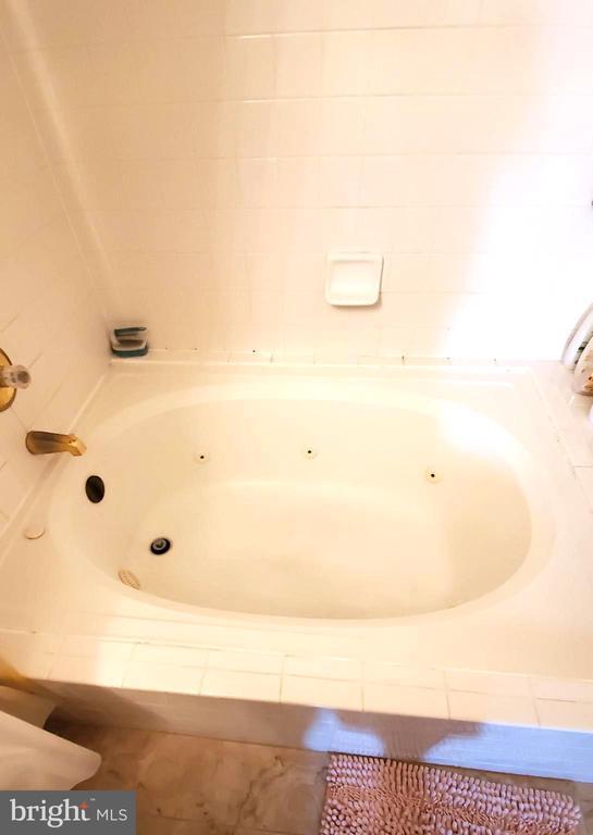 Jacuzzi tub! - 6502 LAKE PARK DR #301, GREENBELT