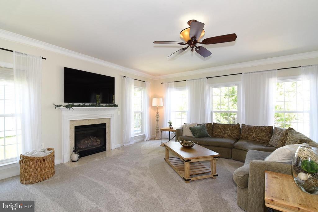 Huge family room with fireplace - 43298 HEATHER LEIGH CT, ASHBURN