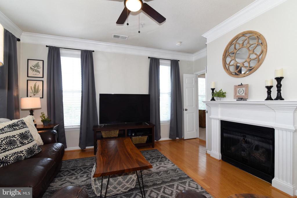 Gas Fireplace - 501 SUNSET VIEW TER SE #306, LEESBURG
