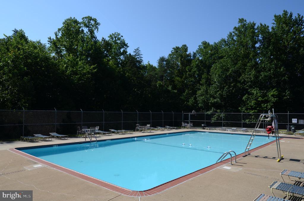 Community pool for summertime fun! - 15 SARRINGTON CT, STAFFORD