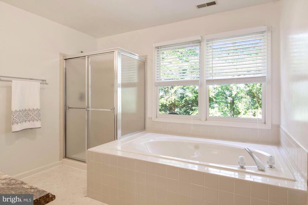 Separate shower and jetted jacuzzi tub - 205 SAIL CV, STAFFORD