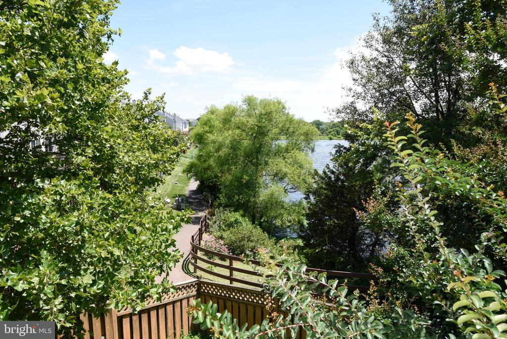 Walking path directly behind the home - 44077 TIPPECANOE TER, ASHBURN