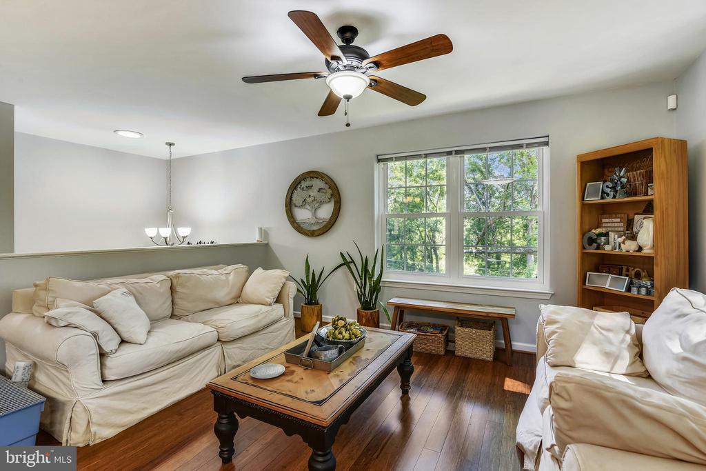 Living Room - 35759 HAYMAN LN, ROUND HILL