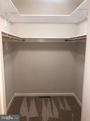 Primary Bedroom Closet - 315 LIMESTONE LN, LOCUST GROVE
