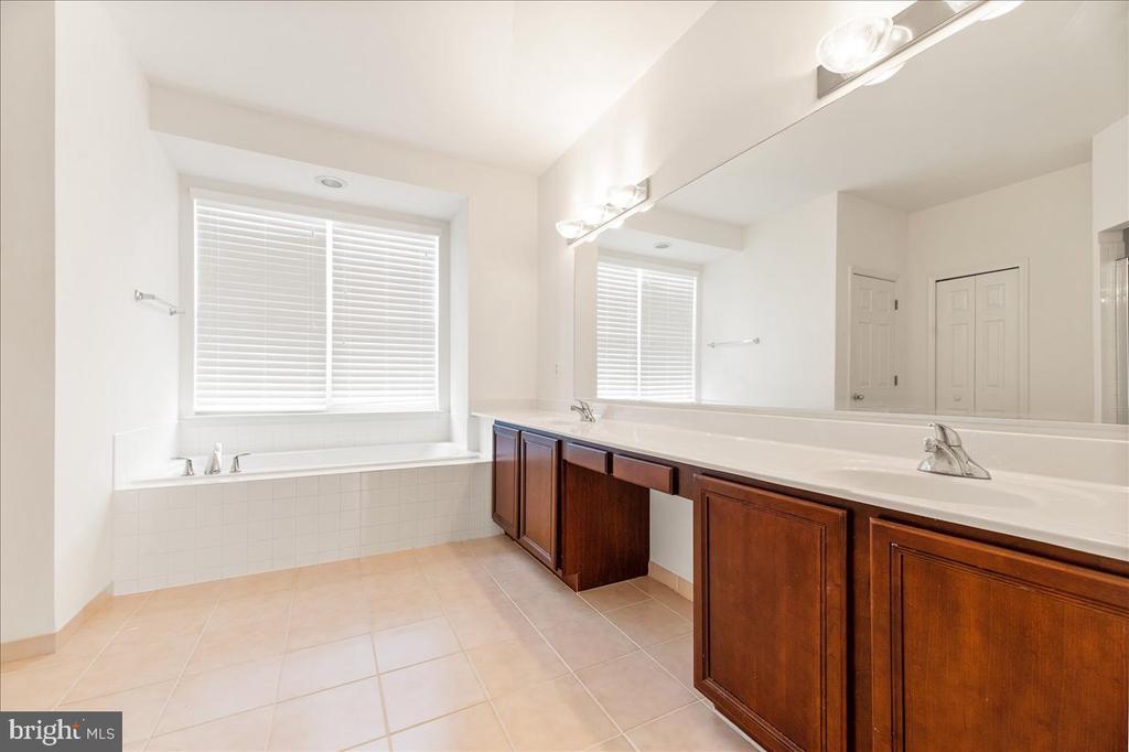 owners full bathroom - 17510 LETHRIDGE CIR, ROUND HILL
