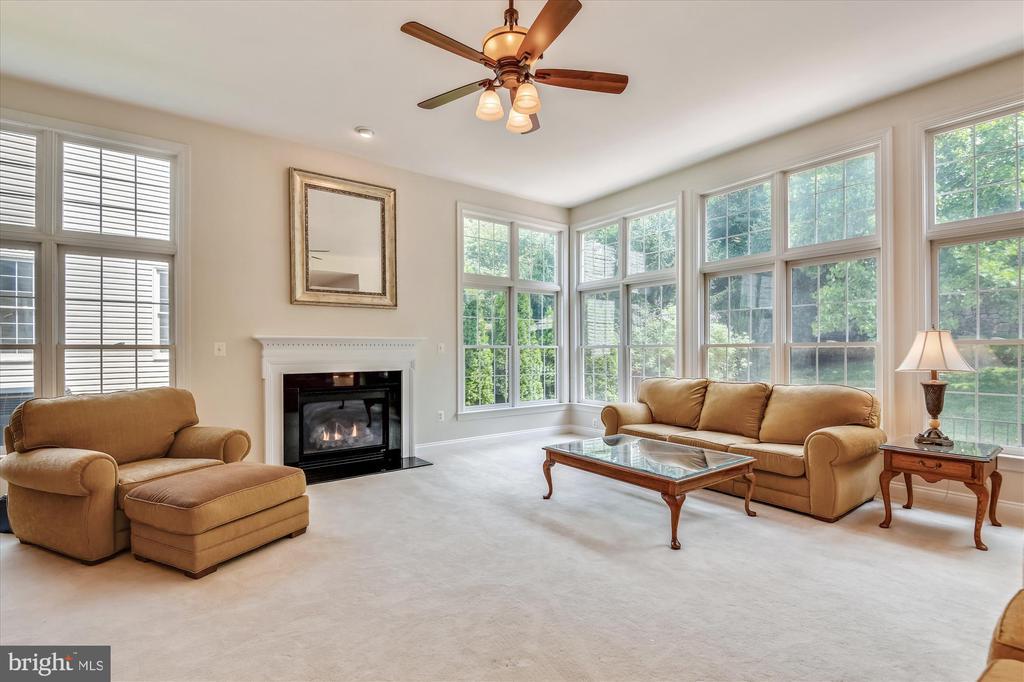 Family Room w/Gas Burning Fireplace - 8043 WINSTEAD MANOR LN, LORTON
