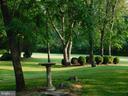 More Gardens - 239 KIMBLE RD, BERRYVILLE