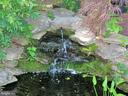 Recirculating water feature with goldfish - 703 WYNGATE DR, FREDERICK