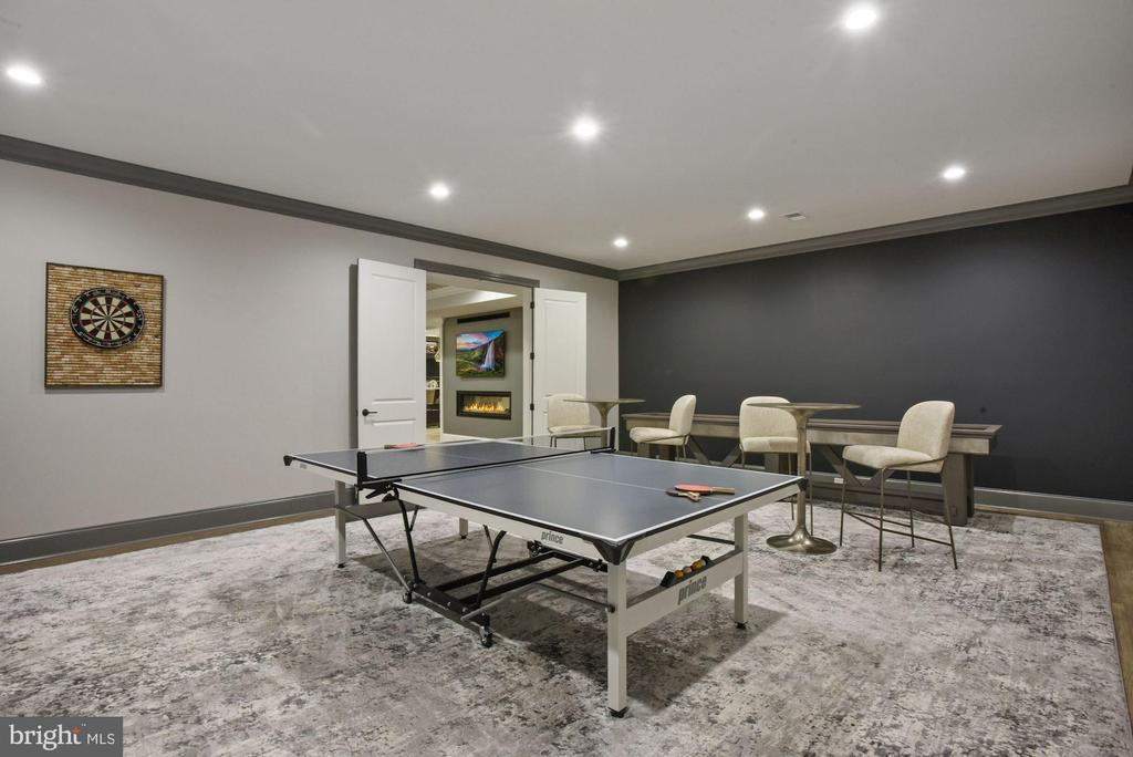 Junior Game Room on Lower Level - 22436 MADISON HILL PL, LEESBURG