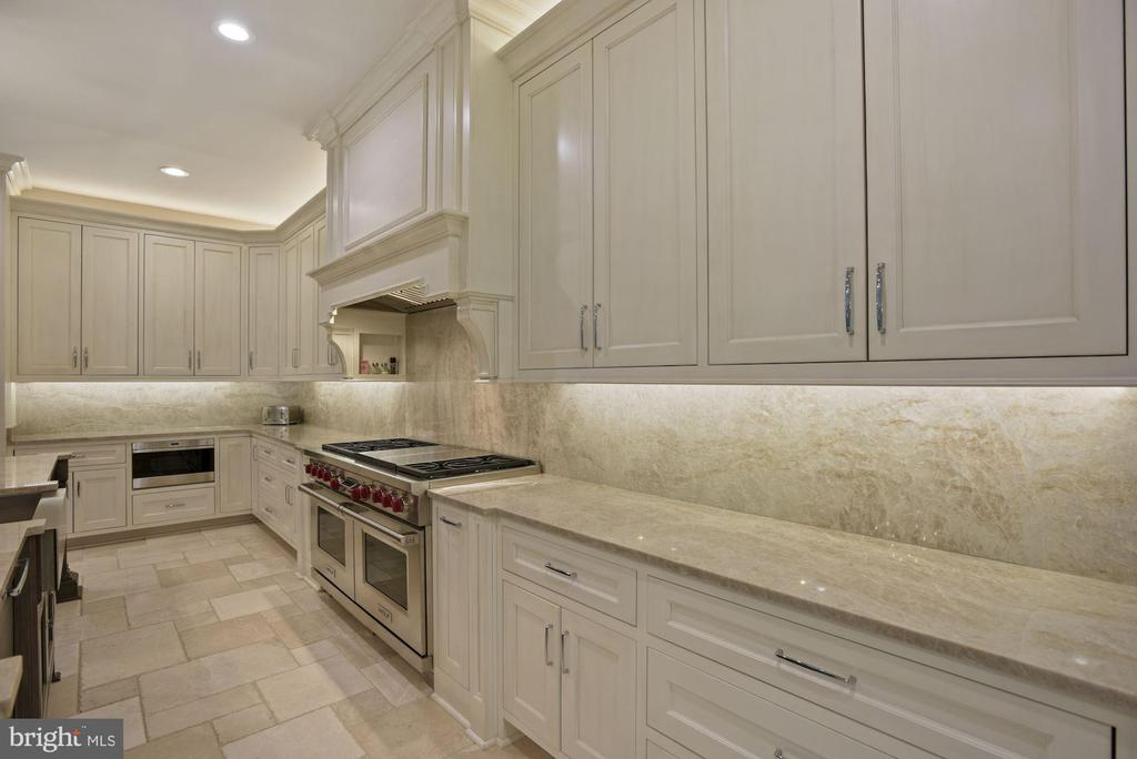 Quartzite Counters and Commercial Grade Appliances - 22436 MADISON HILL PL, LEESBURG