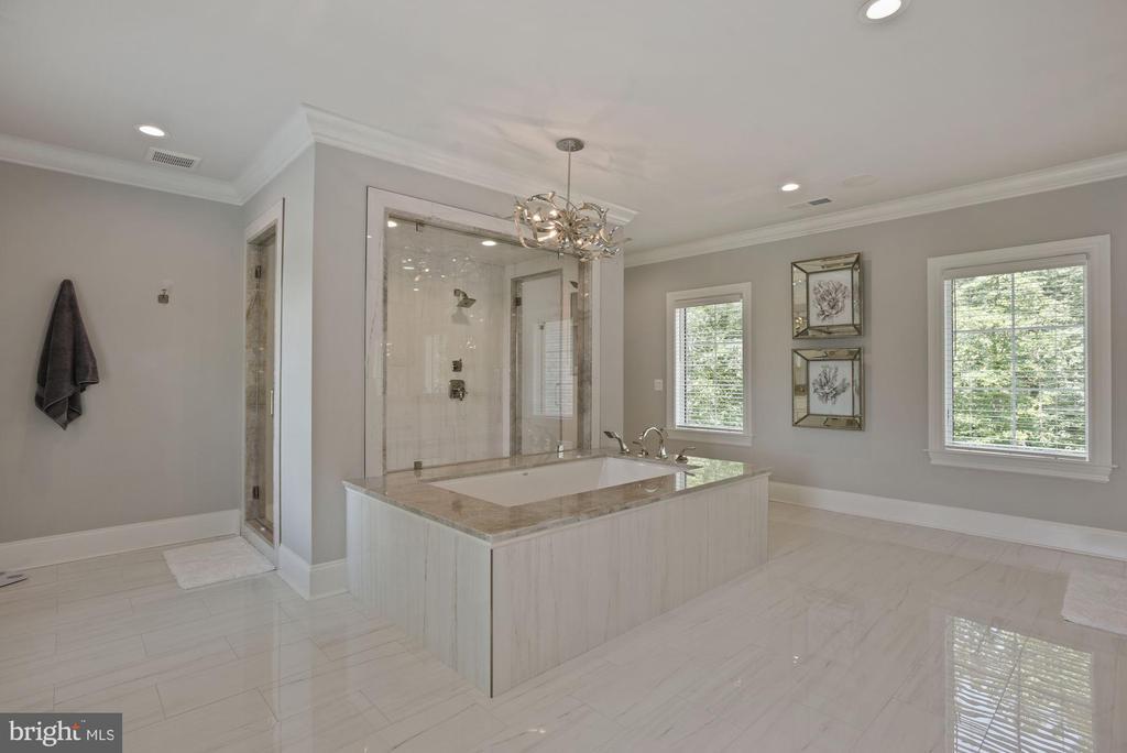 Owner's En Suite Bathroom - 22436 MADISON HILL PL, LEESBURG