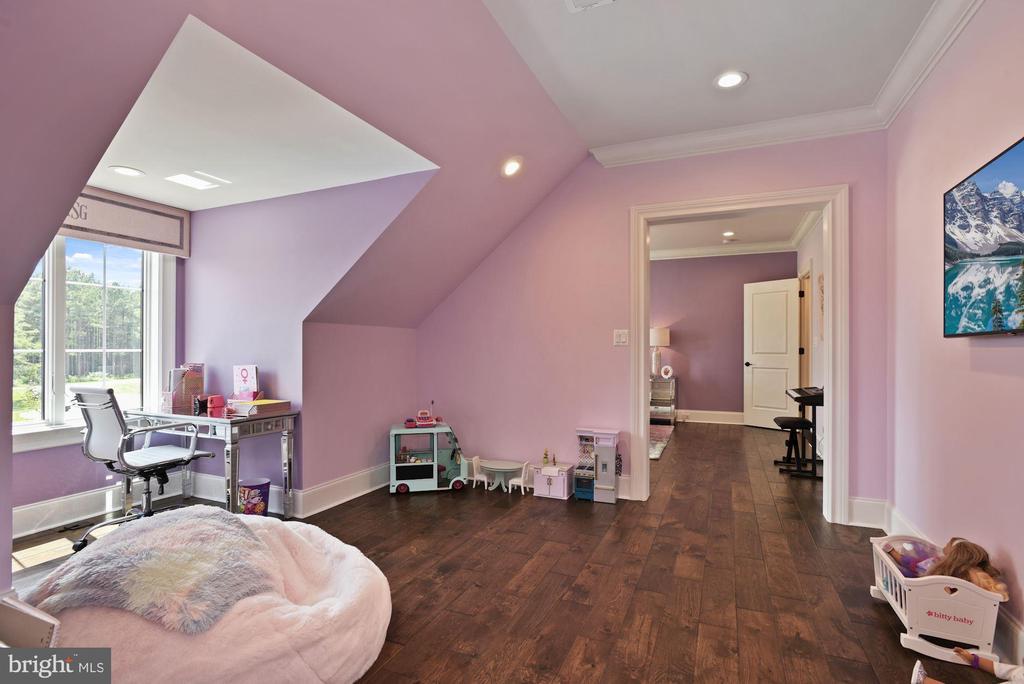Princess Suite Play Room - 22436 MADISON HILL PL, LEESBURG