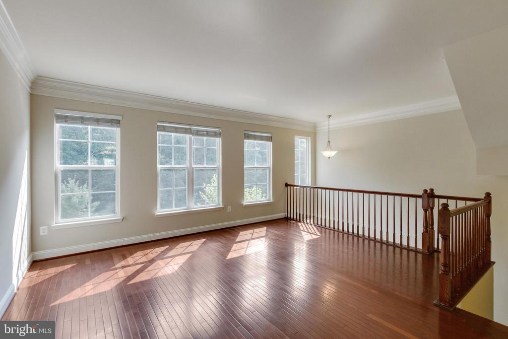 Living Room - 4807 POTOMAC HIGHLANDS CIR, TRIANGLE
