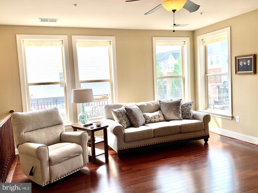 Cozy living room off kitchen - 19383 NEWTON PASS SQ #R06V, LEESBURG